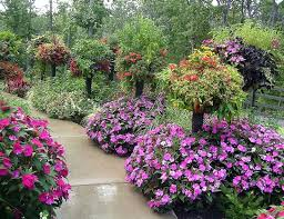 469 best country flower gardens images on pinterest flowers