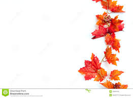 autumn thanksgiving background stock image image of