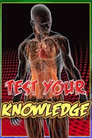 Human Anatomy Quizes Human Anatomy Quiz Pro True False Knowledge Trivia Android Apps