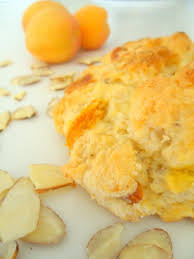 id d o cuisine confession 4 what i d do for a great harvest scone recipe apricot