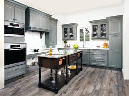 Tower Cabinets In Kitchen Kitchen Tower Cabinet In Home Design