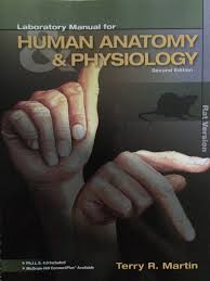 connect plus anatomy choice image learn human anatomy image