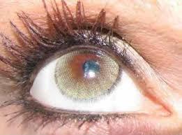 Light Brown Contact Lenses Wrlens Wrlens Com Solotica Contact Lenses Natural Colors