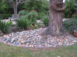 pictures landscaping tree ideas free home designs photos