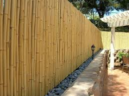 patio 63 backyard design with bamboo fencing and rocks also