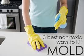 Best Way To Remove Mould From Bathroom Ceiling 3 Non Toxic Ways To Clean Mold The Maids Blog