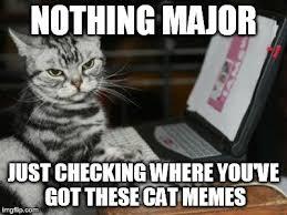 Computer Meme - cat computer meme generator imgflip