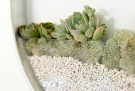 futuristic wall hanging planters zowspace com
