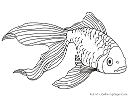 printable 28 tropical fish coloring pages 5112 tropical fish