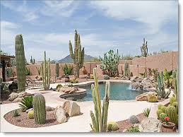 Desert Backyard Landscaping Ideas Stunning Backyard Landscaping With Pool Water Fall And Heated Spa