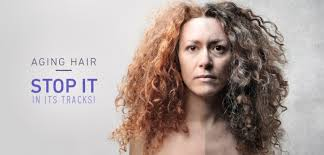 frizzy aged hair aging hair stop it in its tracks monat global