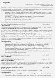 Additional Information On Resume Examples Of Professional Profiles On Resumes How To Write A