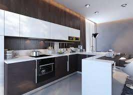 Painting Melamine Kitchen Cabinet Doors Kitchen Design Images Of Modular Kitchen Painting Melamine