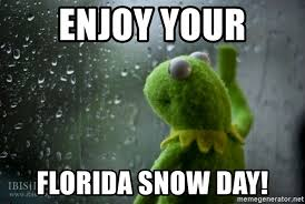 Florida Rain Meme - enjoy your florida snow day kermit rain meme generator