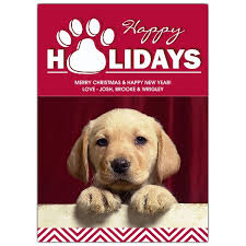 happy pawlidays photo pet cards paperstyle