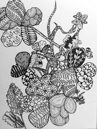 zentangle artful explorations in nature