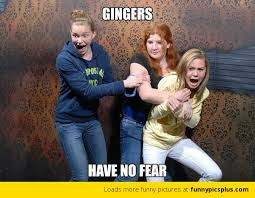 Fear Meme - gingers have no fear meme funny pictures