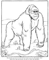 printable zoo animal coloring pages gorilla coloring pages zoo animals