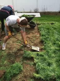 preparing your soil for planting vegetables u2014 portland edible