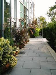 Patio Container Garden Ideas Patio Container Garden Ideas Landscape Contemporary With Purple