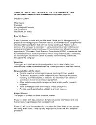consultant proposal template marketing consultant proposal format