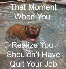 Quitting Meme - entrepreneurs don t quit your day job yet
