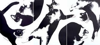 Internet Meme Cat - a cat art show turns your favorite internet meme into muse huffpost