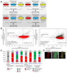 Ndu Attestation Letter proteomic mapping of cytosol facing outer mitochondrial and er