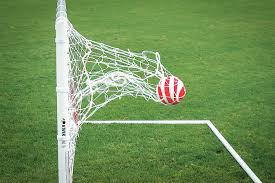 specialty nets kwik goal soccer store