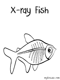 ray coloring pages coloring