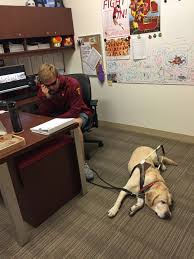 Blind Dog And His Guide Dog Two Blind Long Snappers Take On Division I Football Only A Game