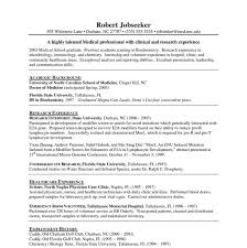 10 internship resume templates free pdf word psd