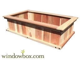 redwood raised bed garden vegetable gardening emilysplants com