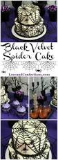 Halloween Cakes To Make At Home Best 10 Spider Cake Ideas On Pinterest Halloween Cakes