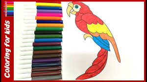 bird coloring pages how to color beautiful parrot coloring pages
