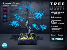 second marketplace sales tree japanese maple