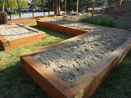 cooking from a high plains garden raised beds for efficient