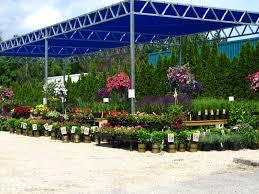 Types Of Flower Gardens Ideas Types Of Flowers Wights Nursery Best Flowers For Flower