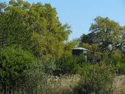 Texas Blinds Texas Deer Hunting Blind