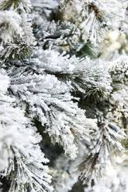 learn how to easily flock your own tree using sno flock