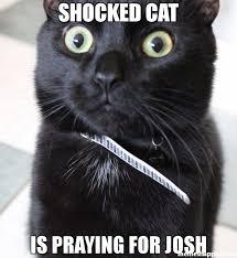 Praying Memes - shocked cat is praying for josh meme woah kitty 52444 memeshappen