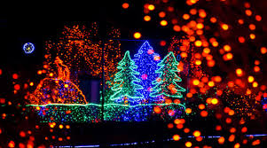 discounted tickets for zoolights at point defiance zoo thrifty