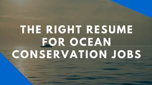 Job Getting Resume by The Resume For Marine Science And Conservation Careers Speak Up