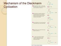 www michaeljacksonshortesthaircut com dieckmann thesis essayie bilder news infos aus dem web u beck