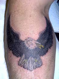 bald eagle tattoos 12 best tattoos ever