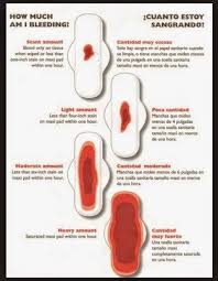 is a light period a sign of pregnancy steps of pregnancy