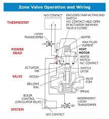 zone electric golf cart related keywords u0026 suggestions u2013 zone