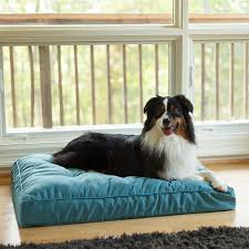 pillow top dog bed snoozer orthopedic pillow top dog bed 12 colors 3 sizes