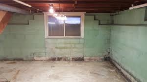 basement mold removal how to remove mold youtube