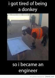donkey engineer2 nerd 2 nerd2 nerd